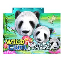 Slot Joker123 Wild Giant Panda